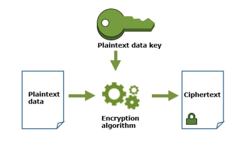 how plaintext data key work