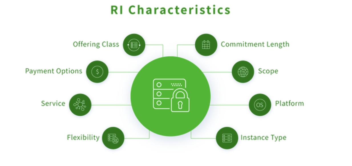 description of Reserved instances